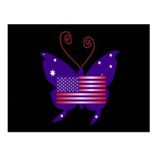 Papillon américain de diva