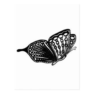 Papillon Carte Postale