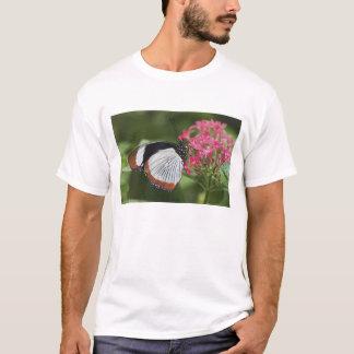 Papillon d'Afrique T-shirt