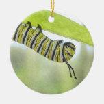 Papillon de monarque Caterpillar explorant un Ornement De Noël