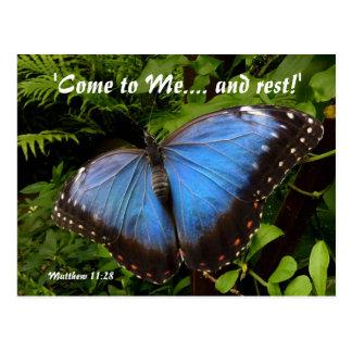 Papillon exotique bleu carte postale