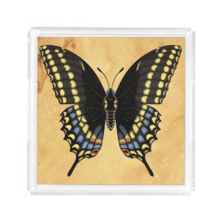 Papillon noir de machaon plateau en acrylique