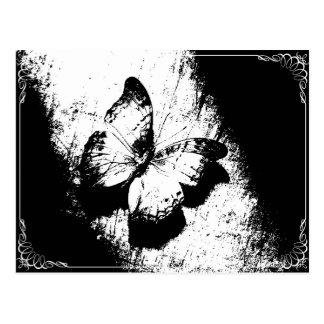 Papillon noir et blanc carte postale