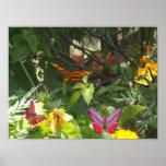 Papillon sur la copie de toile de feuille affiche