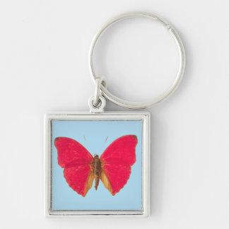 Papillon sur le porte - clé bleu porte-clés