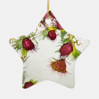 Papillon sur les baies rouges ornement étoile en céramique