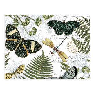 papillons et libellules vintages modernes carte postale