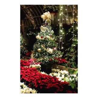 Paradis de Noël Papeterie