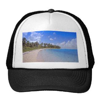 paradis tropical casquettes