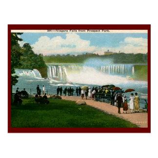 Parc de perspective, cru de chutes du Niagara Carte Postale
