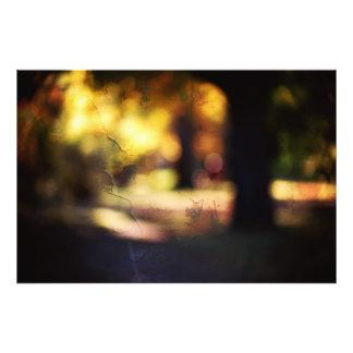 Parc en automne impression photo