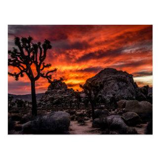 Parc national d'arbre de Joshua à la carte postale