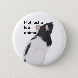 Pas simplement un animal de laboratoire badge rond 5 cm