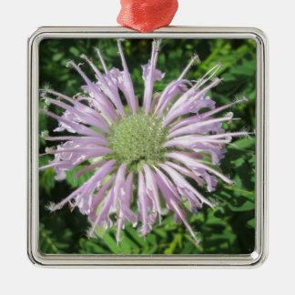 Paume pourpre d'abeille ornement carré argenté