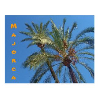 Paumes de Majorca - carte postale