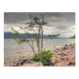 Paysage de Loch Ness Carte Postale