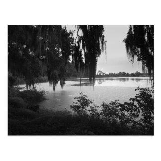 Paysage d'étang de riz - noir et blanc carte postale