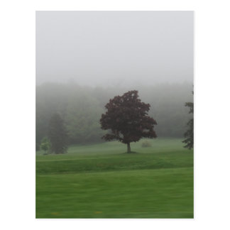 Paysage rempli par brouillard cartes postales