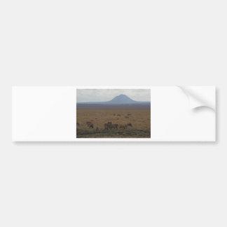Paysage Tanzanie Tom Wurl Autocollant De Voiture