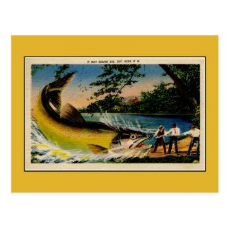 Pêche exagérée par cru drôle carte postale