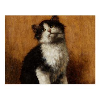 Peinture mignonne de chat cartes postales