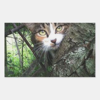Penny dans l'arbre sticker rectangulaire