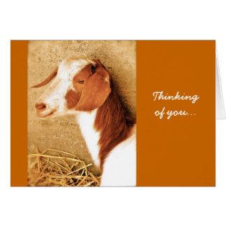 Pensée à vous carte de chèvre