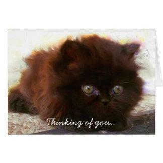 Pensée à vous carte de voeux persane de chaton