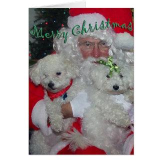 Père Noël et carte de Noël de caniches