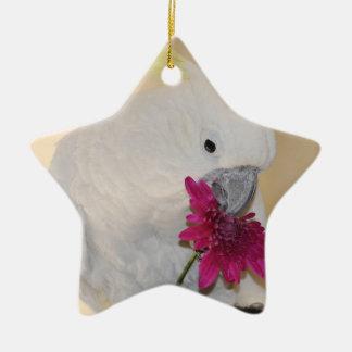 Perroquet il m'aime ou pas ornement étoile en céramique