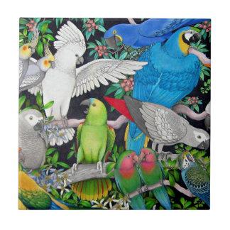 Perroquets d'animal familier de la tuile du monde petit carreau carré