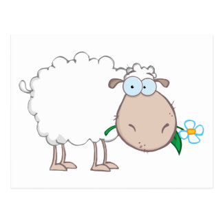 Personnage de dessin animé de moutons blancs mange cartes postales