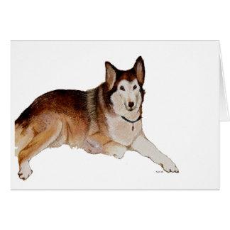 Cadeaux Condoléances Canines – T-Shirts, Art, Posters