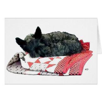 Petit chien de Scottie de sommeil Carte