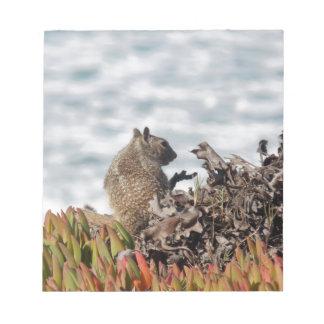 Petit écureuil bloc-note