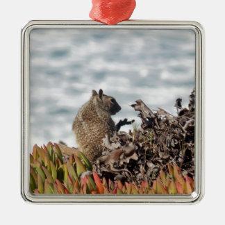 Petit écureuil ornement carré argenté