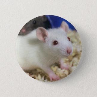 Petit rat badge rond 5 cm