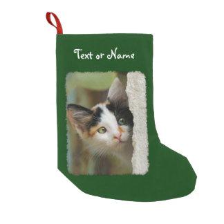 Petite Chaussette De Noël Photo curieuse mignonne de chaton de chat - Père