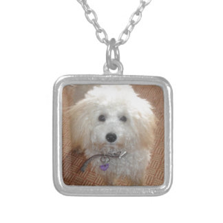 Petite Mlle Pretty Poodle Collier