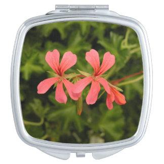 peu de miroir compact