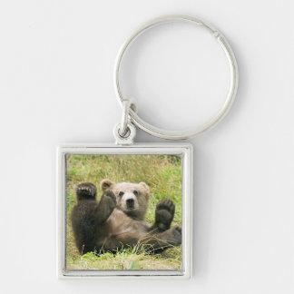 Photo brune mignonne de petit animal d'ours gris, porte-clés