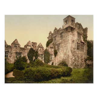 Photo-Copie vintage du Donegal Castle (1900)