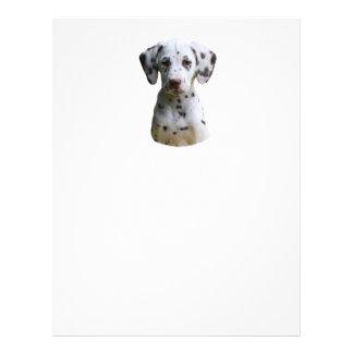 Photo dalmatienne de chiot prospectus