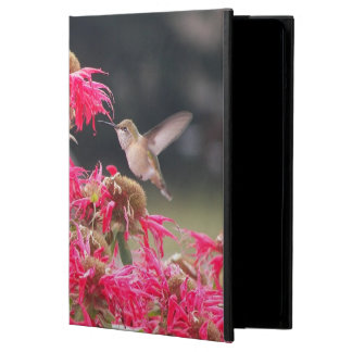 Photo de colibri en vol coque iPad air