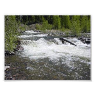 Photo de mur de rivière et d'arbres