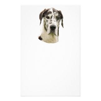 Photo de portrait de great dane de harlequin prospectus 14 cm x 21,6 cm