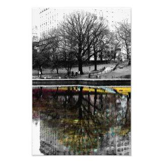 Photo de réflexion d'arbre de Central Park