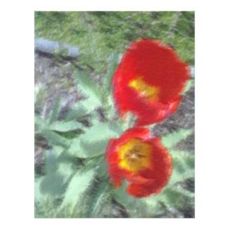 Photo éditée de fleur prospectus