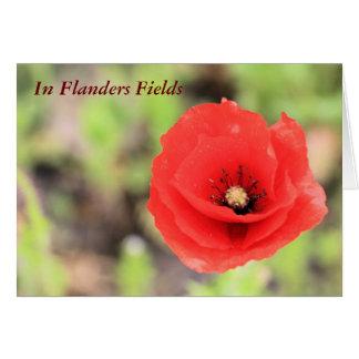 Photo et poème de pavot de champs de la Flandre Carte De Vœux