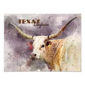 Photo faite sur commande d'aquarelle du Texas